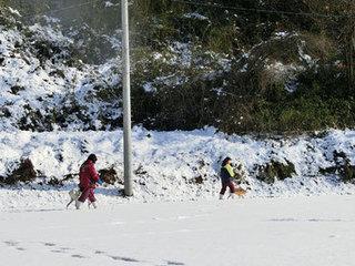 2015.1.16.雪の中の散歩.jpg